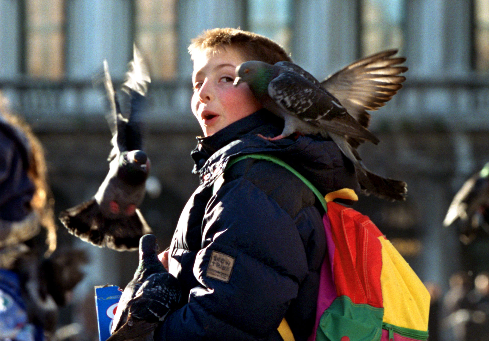 Kid-wPigeon-on-Shoulder