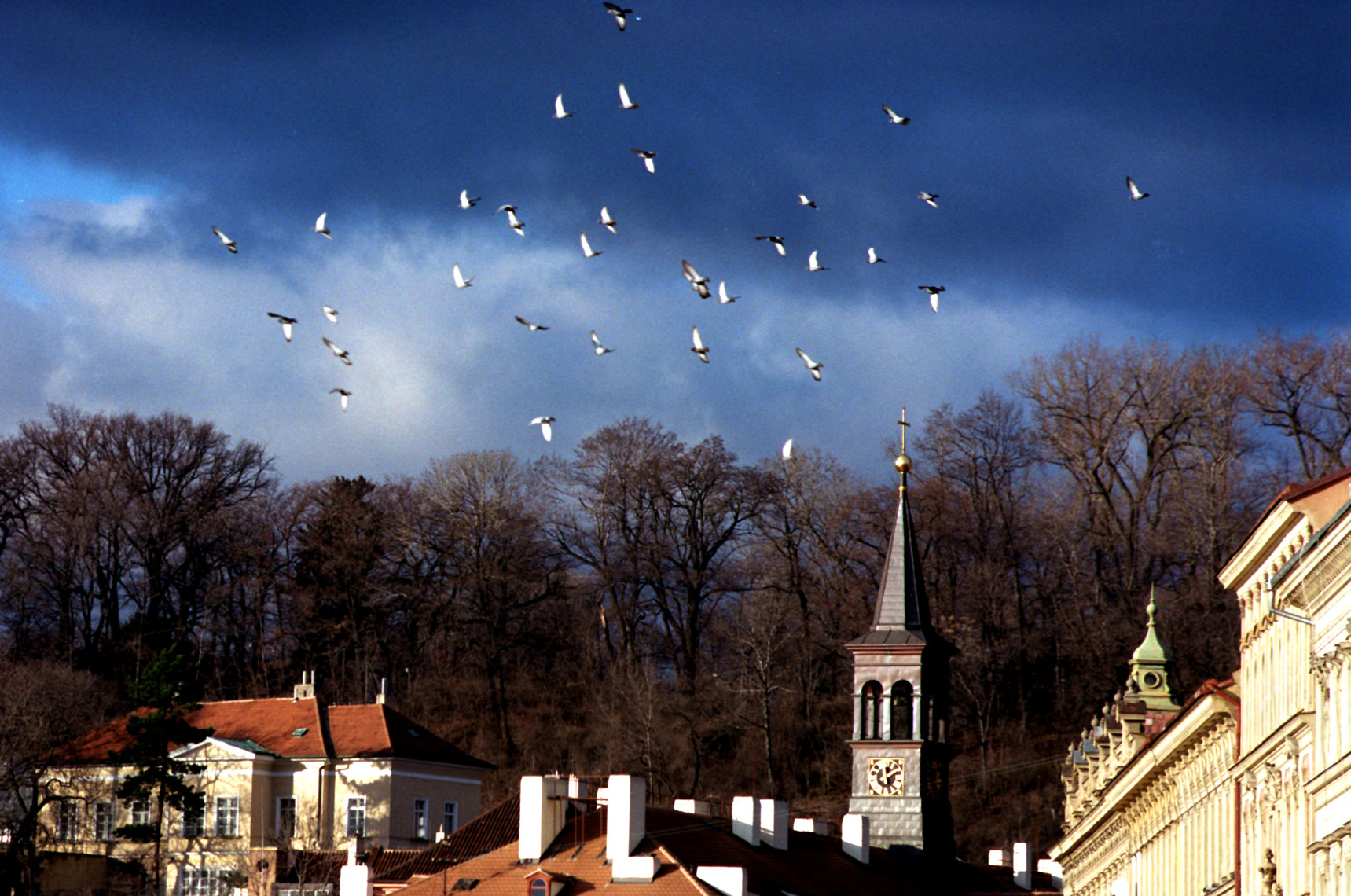 Prague-steeple-and-birds